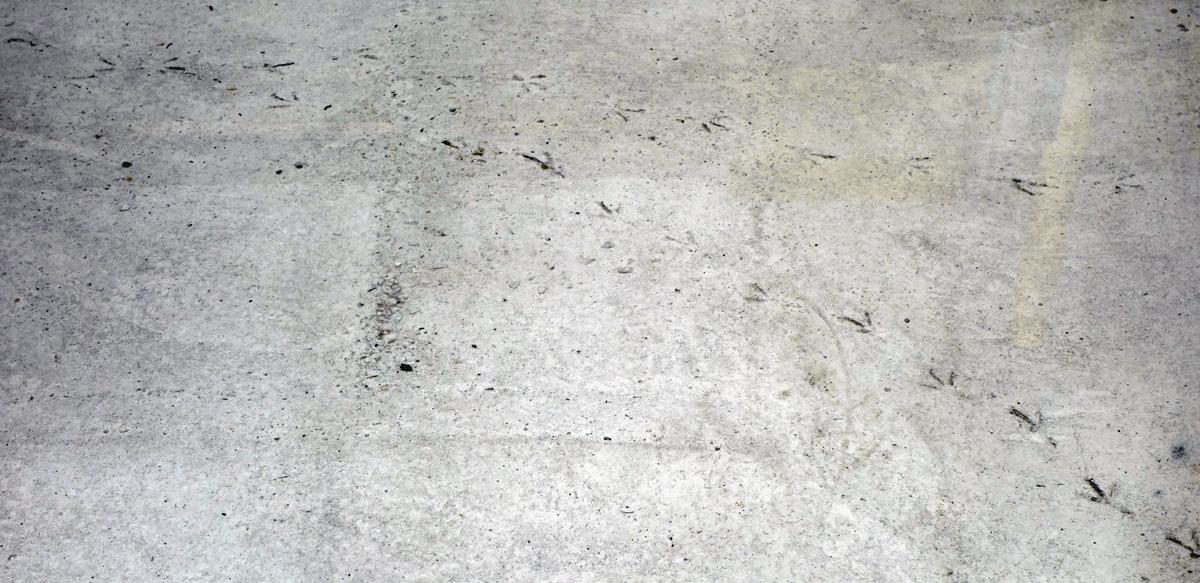 afdruk in beton